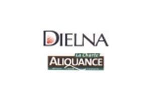 logo_dielna