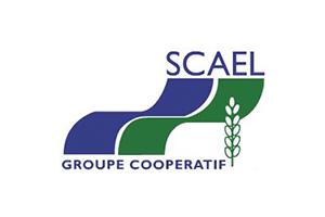 logo_scael