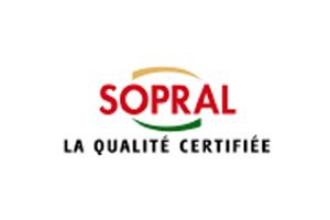 logo_sopral